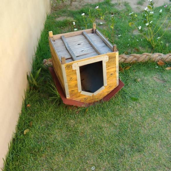 Casa de cachorro de cabeça pra baixo fora da casa [Foto: Casa de Cabeça pra baixo business]